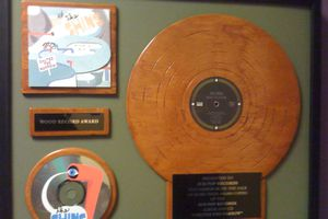 the Shins sub pop record framed