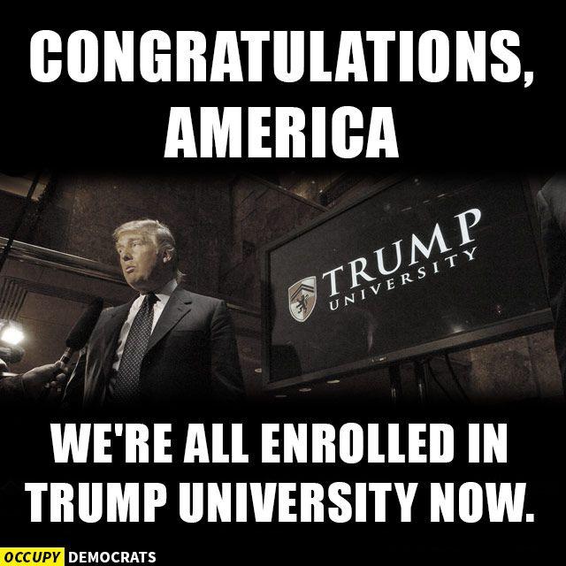congrats - Trump meme
