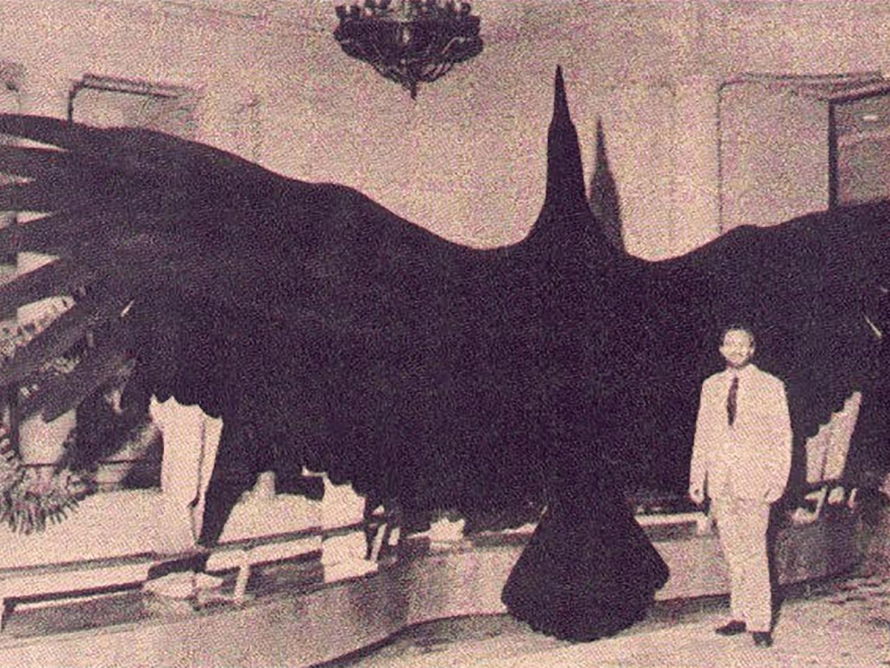 giant thunderbird 56c0d4de5f9b5829f ca