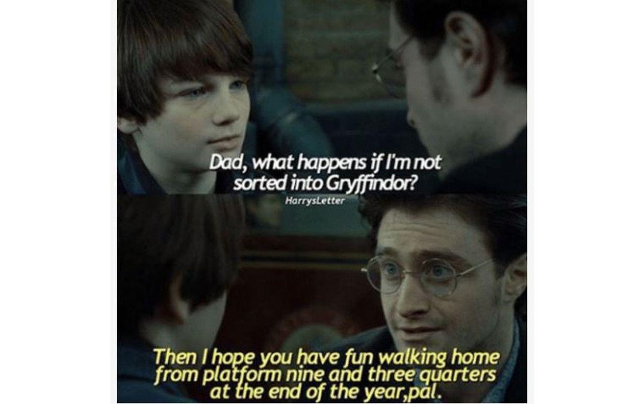 Harry Potter son meme