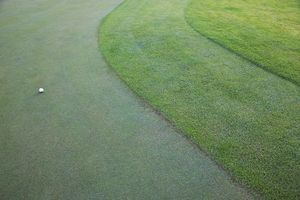 Three golf course grass heights: fairway, first cut of rough and second cut of rough.
