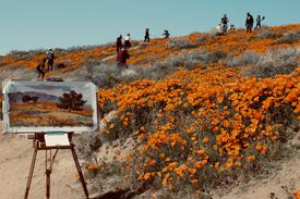 Artist easel with canvas in front of a hill covered with wildflowers and people.