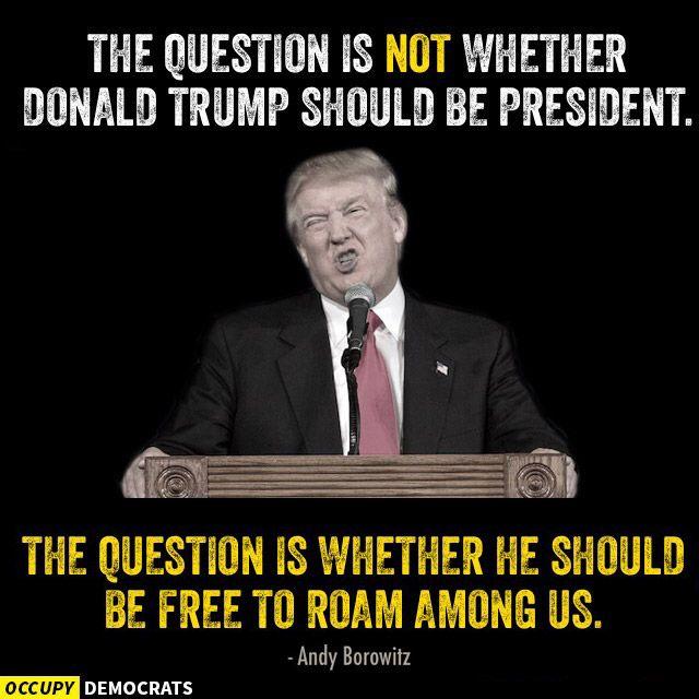Presidnet Trump Question