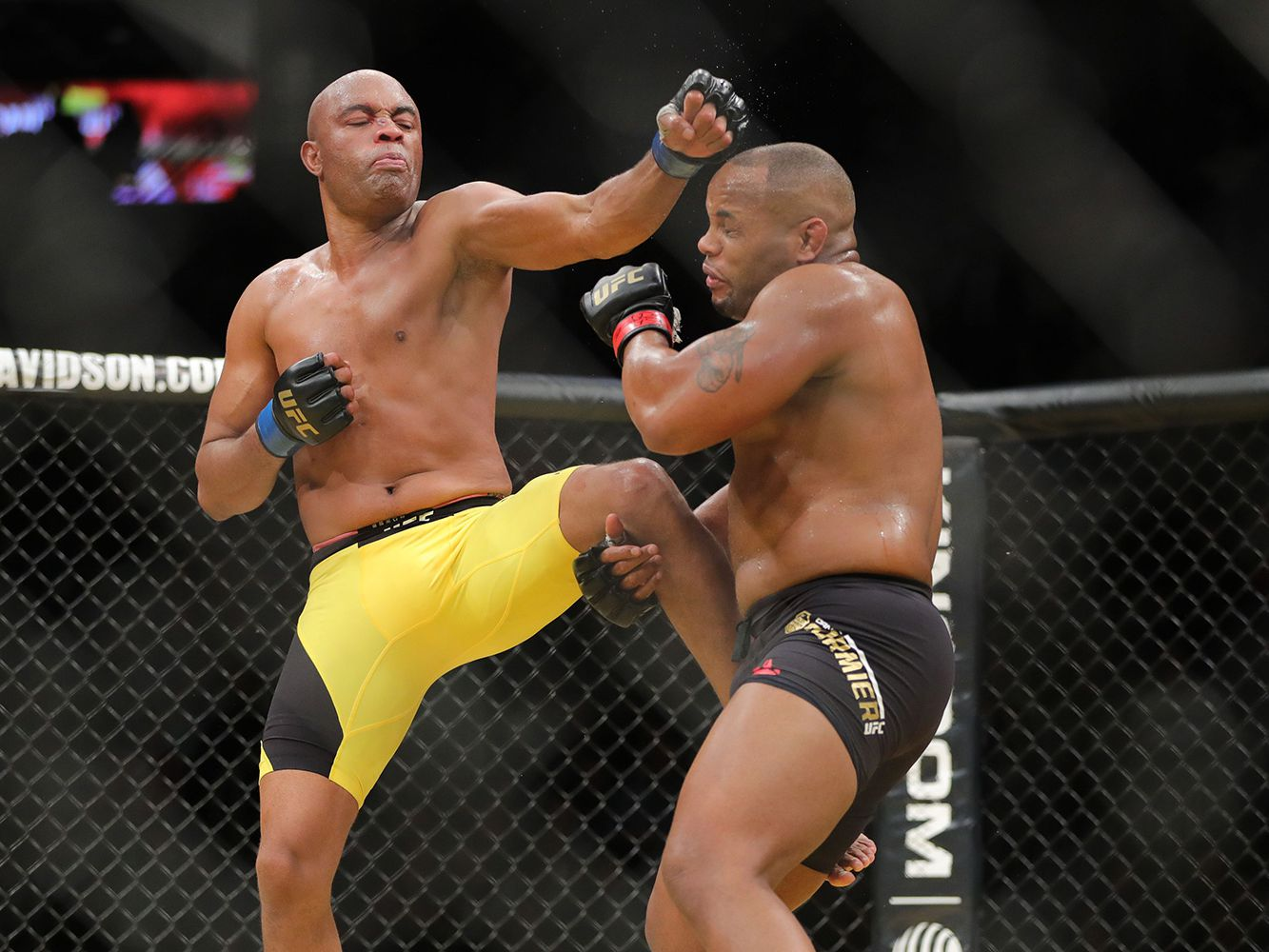 Meet the 15 Best MMA Fighters of All Time