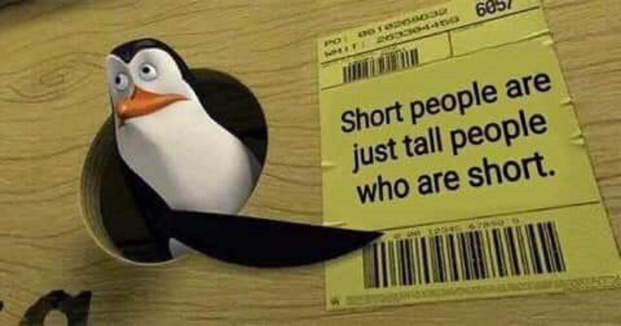 Penguins of Madagascar meme about short people