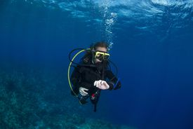 Scuba diving at the safety stop