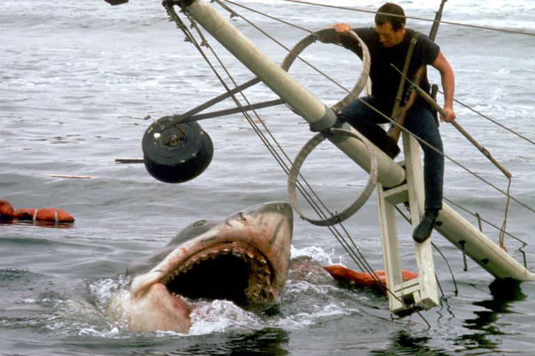American actor Roy Scheider on the set of Jaws, directed by Steven Spielberg.