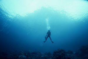 Underwater Seascape with diver