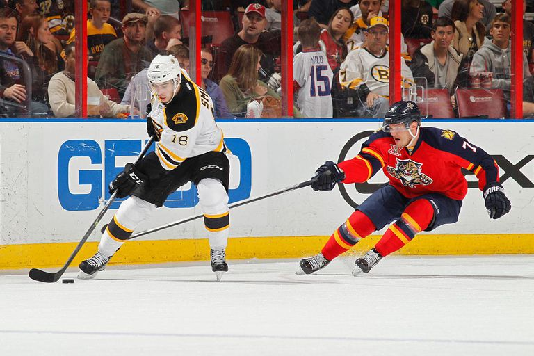 Dmitry Kulikov #7 of the Florida Panthers defends against Reilly Smith #18 of the Boston Bruins during a first period power play at the BB&T Center