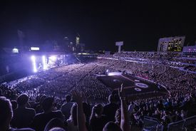 Fans in Stadium