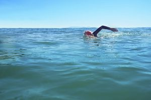 triathlon swim
