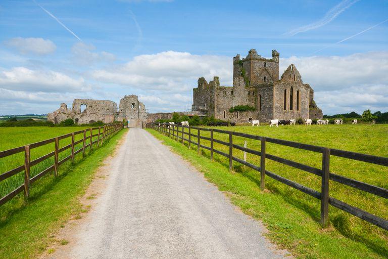 Dunbrody Abbey in Wexford, Ireland