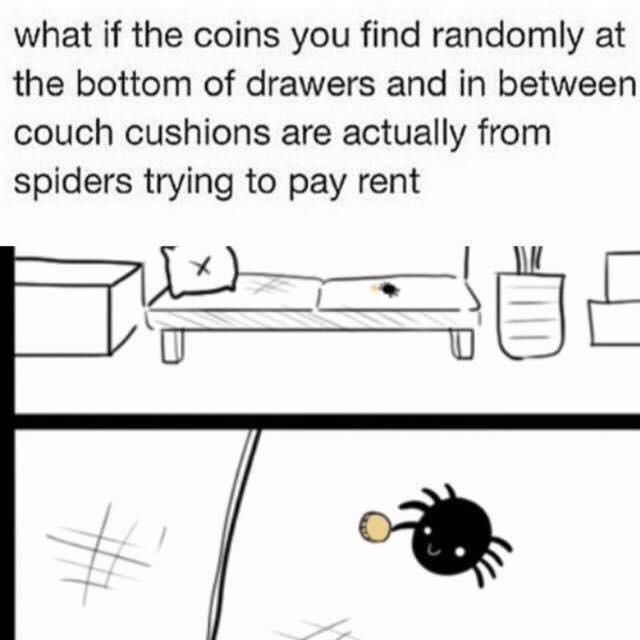 spiders paying rent