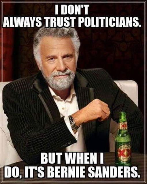 Trusting Politicians
