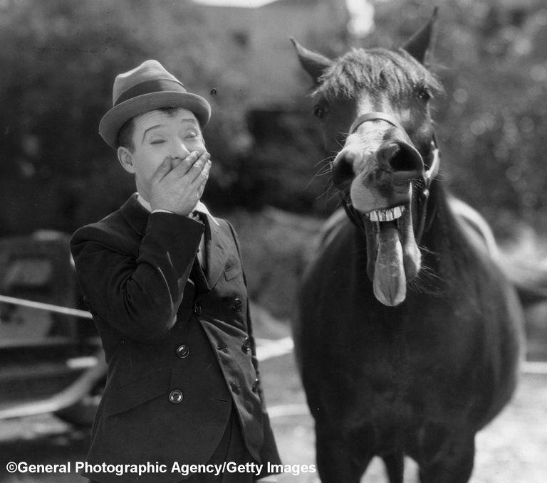 horse racing laugh