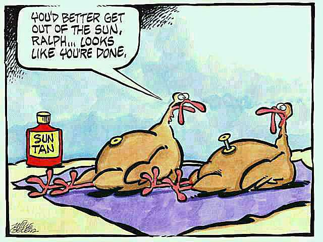 ralph turkey 58b8d6e15f9b58af5c8eed85 - Free funny thanksgiving photos