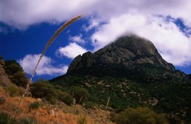 Baboquivari mountaintop crested by clouds.