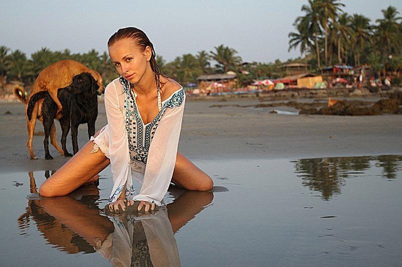 model photobomb dogs