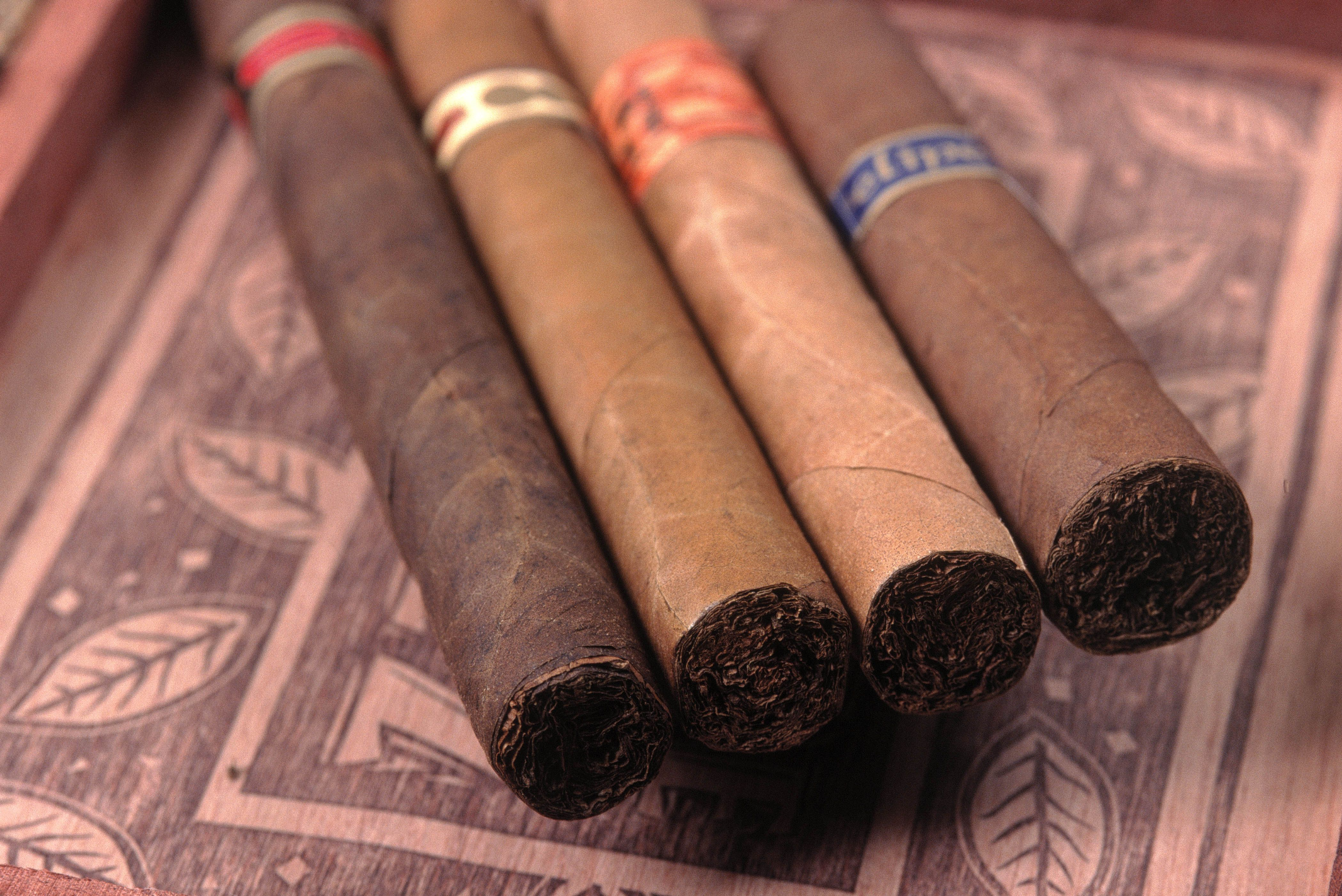 The Best Cigars for Beginners