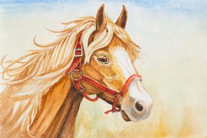 Water color painting of horse