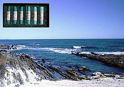 Pastel Painting Seascape Demonstration