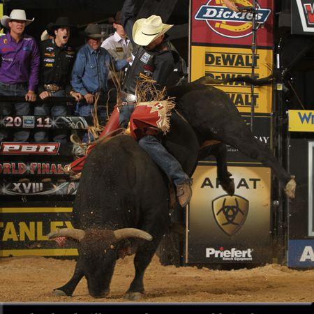 Man riding bull Shepherd Hills Tested.