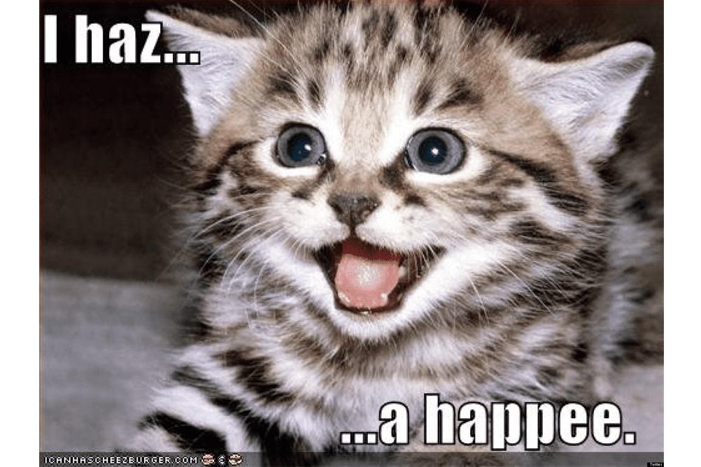 Screenshot of a LOLcat meme