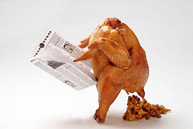 Image result for funny turkey day