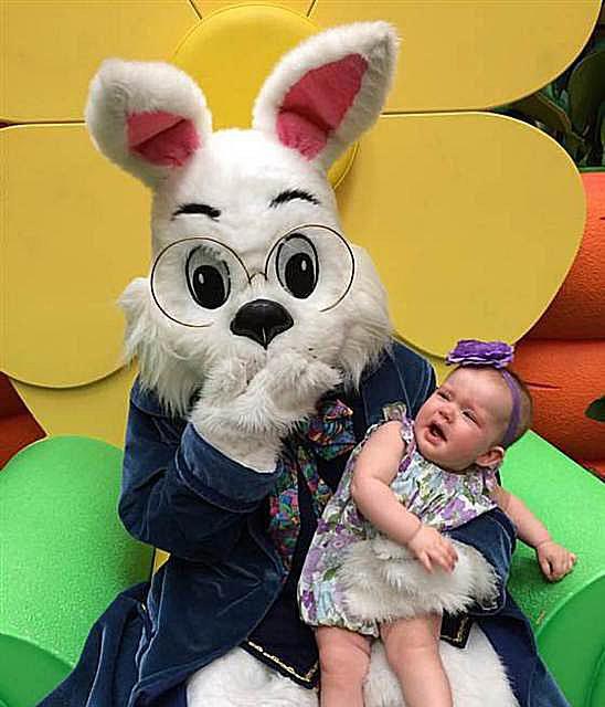 scary-bunny16.jpg