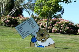 A cartoon gopher cutout holds a sign explaning the Modified Stableford scoring system.