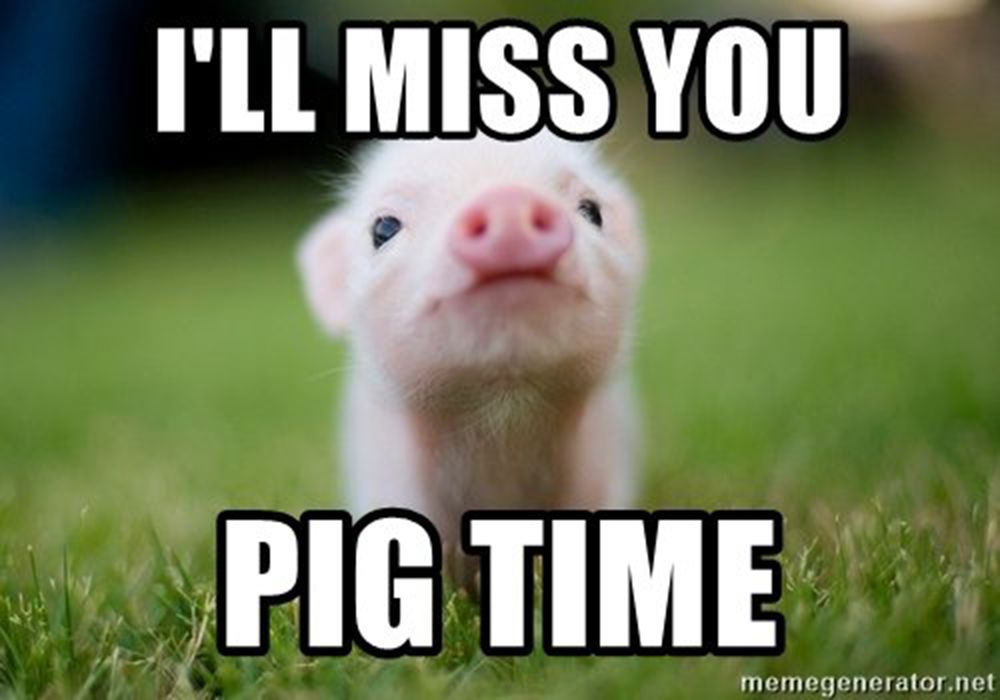 Baby Pig misses you