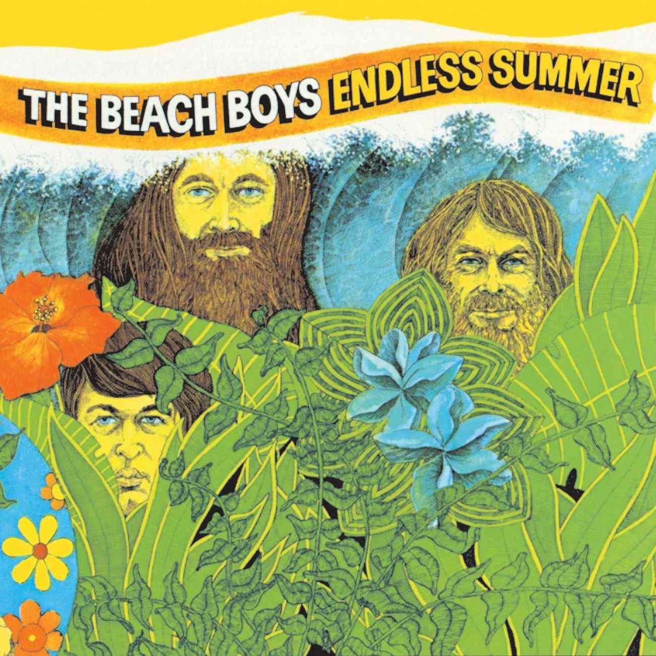 Beach Boys Endless Summer