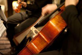 String quartet Cello