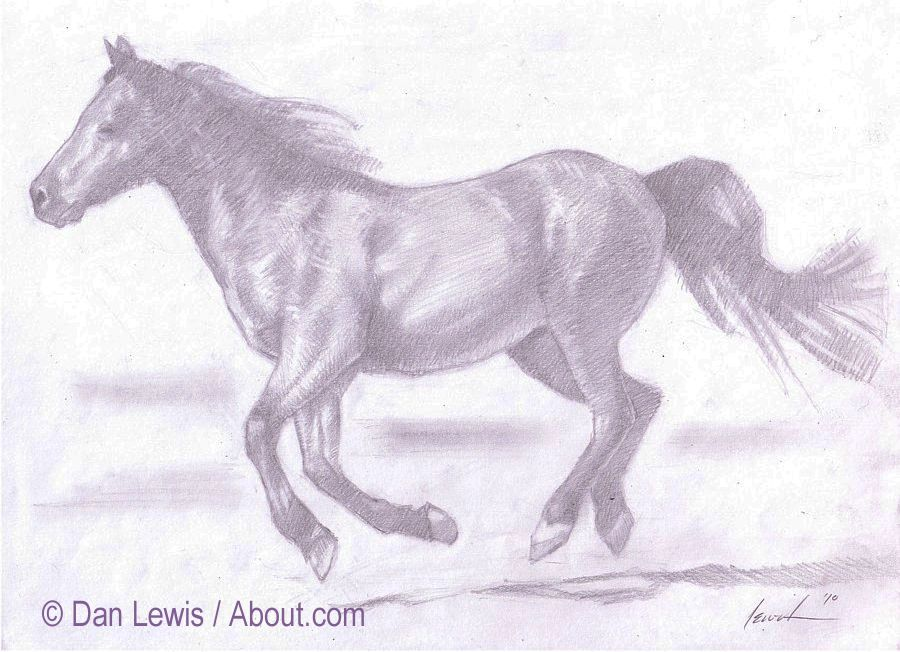 the completed horse sketch