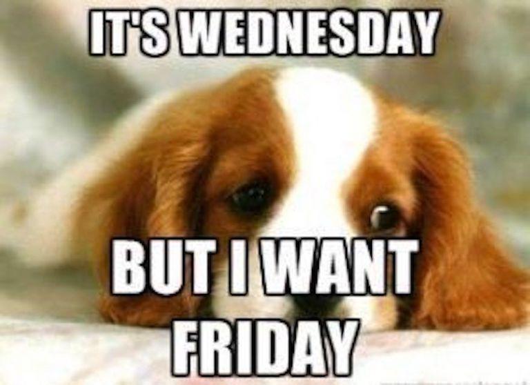 It's wednesday but I want Friday - meme