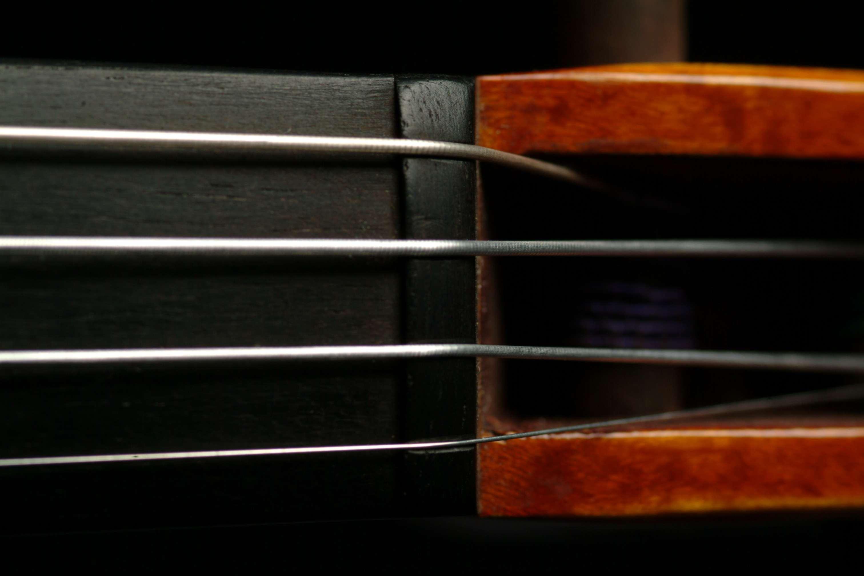 Violin fingerboard nut with strings