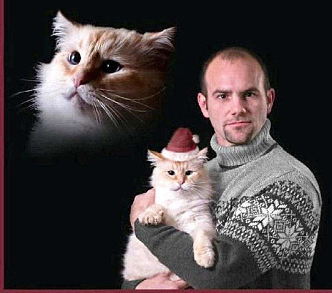 funny-christmas-cards-cat-mas.jpg