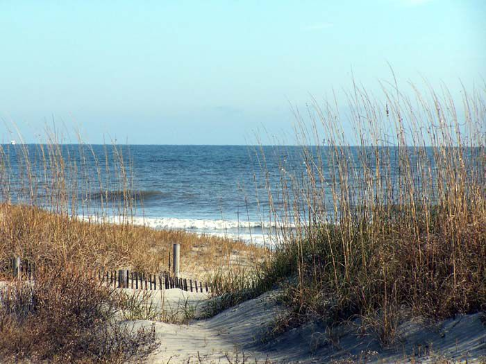 Reference Photos for Artists: Tybee Island Beach 1