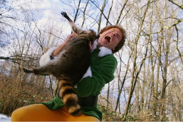 Buddy the Elf attacked by a raccoon