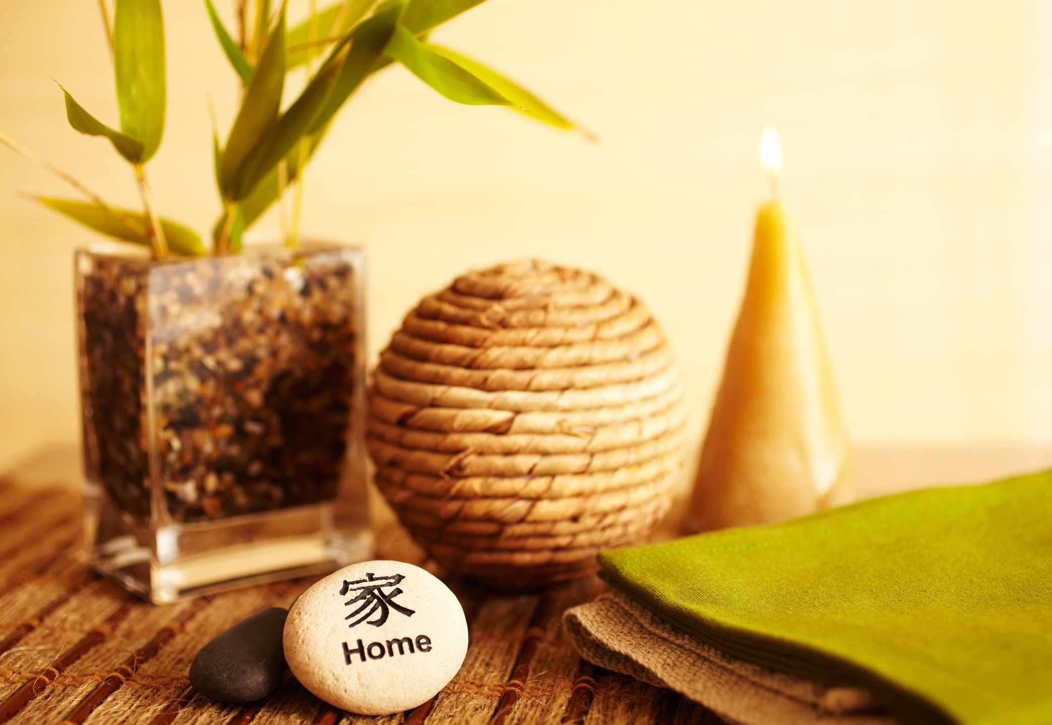 Lucky Feng Shui plants and a stone that says,