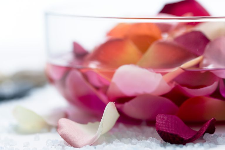 rose petals in water