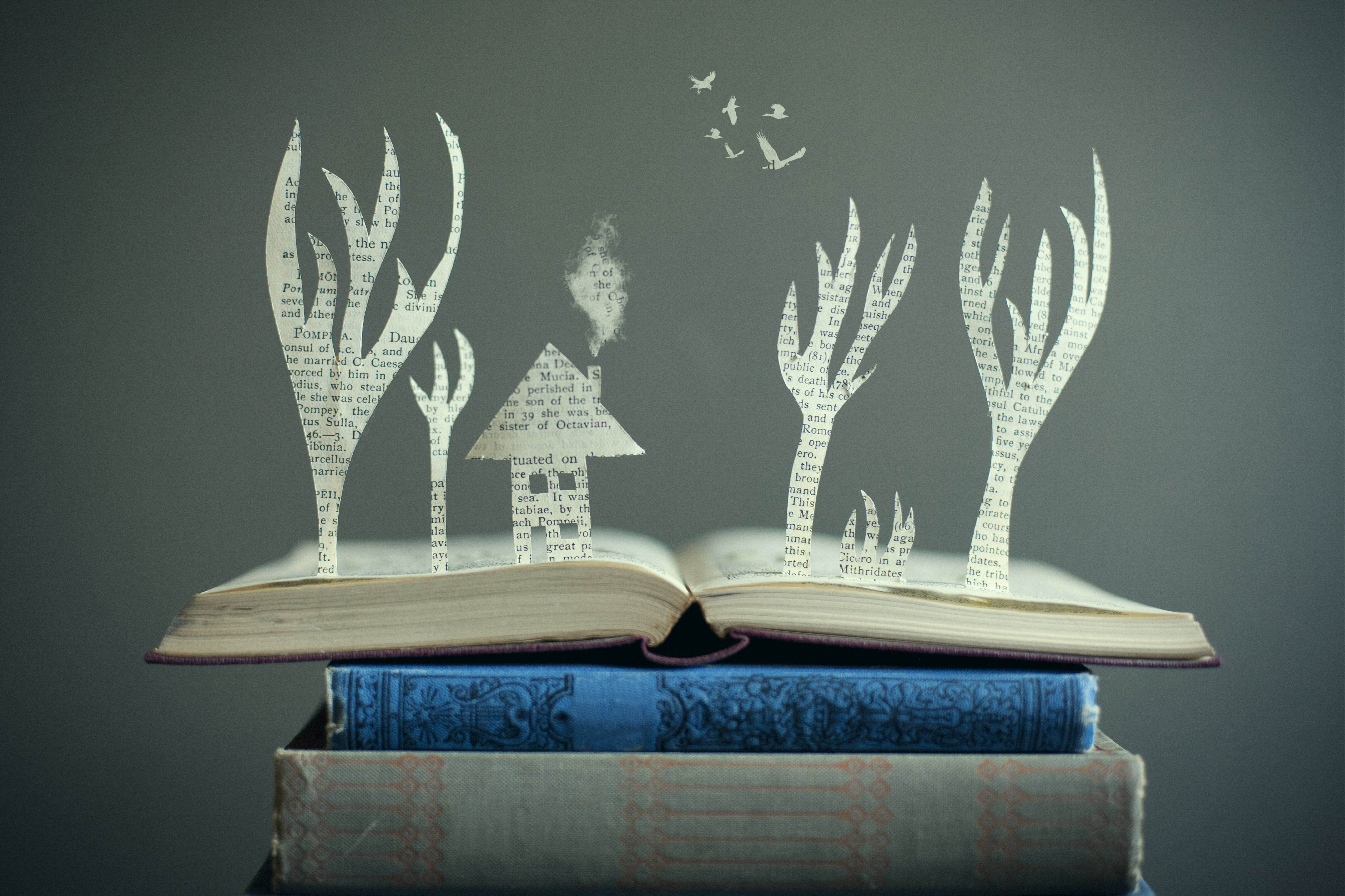 An open book with paper cut outs, popping up in the shapes of a house and some trees.