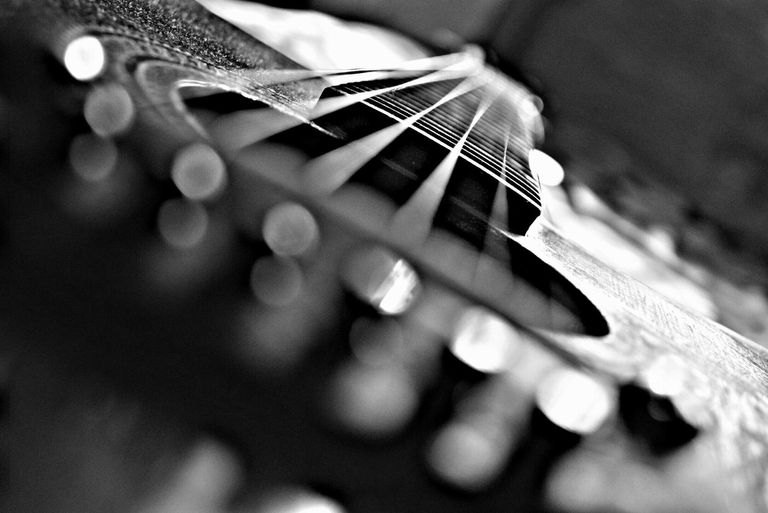 The strings of a guitar closeup view