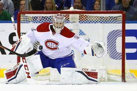 NHL goalie save
