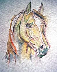 Watercolor horse painting