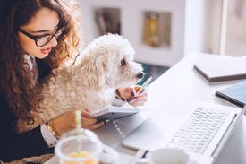 Woman taking notes at desk with dog on lap
