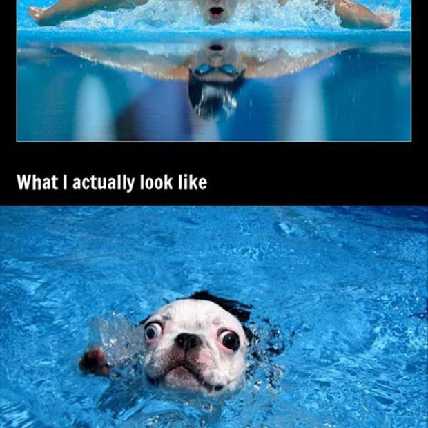 Expectations vs Reality: Swimming