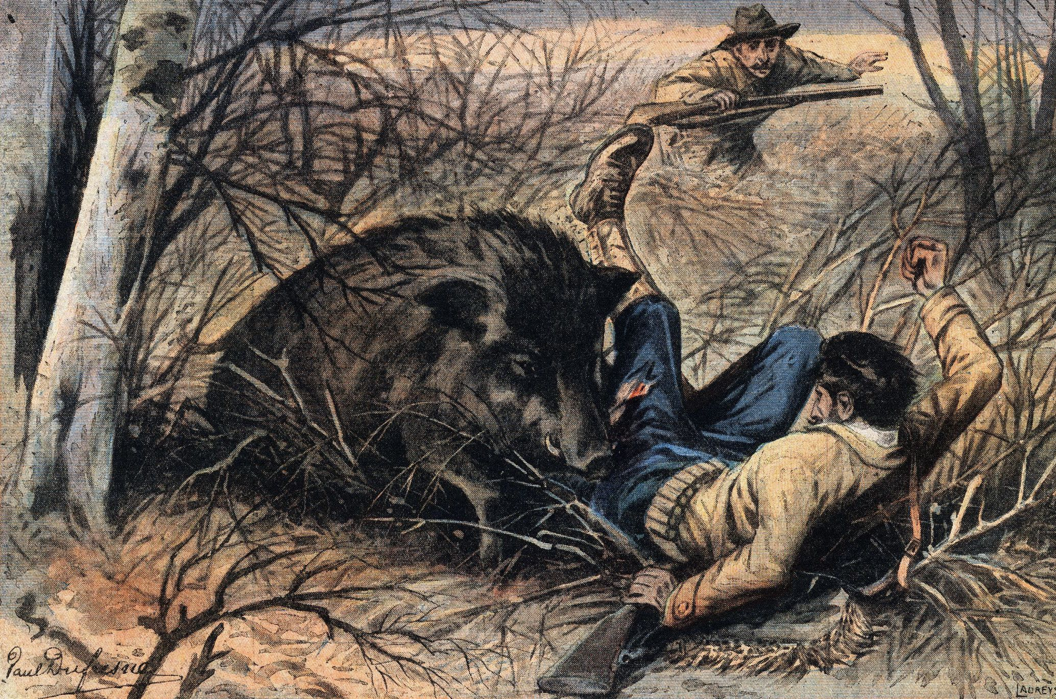 Was a 1,800-Lb. Wild Boar Really Shot in Conroe, Texas? Giant Wild Boars In Asia