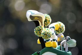 Golf clubs and headcovers in a golf bag