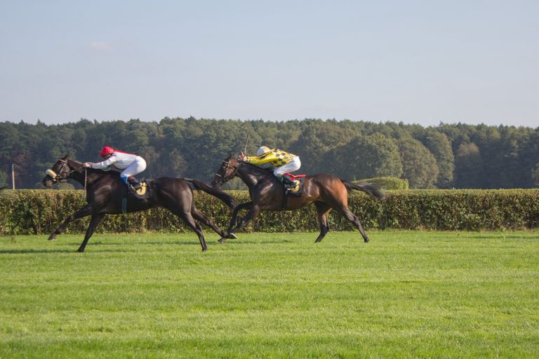 Jockeys Race Across a Field